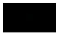 Zin Strumenti Musicali Logo